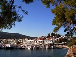 Skiathos_port.jpg